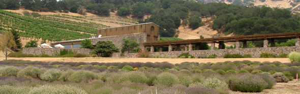 Image of Robert Sinskey Vineyards